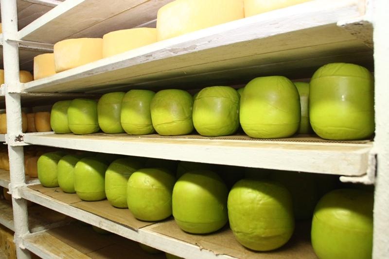 Жители России закончили покупать иностранный сыр